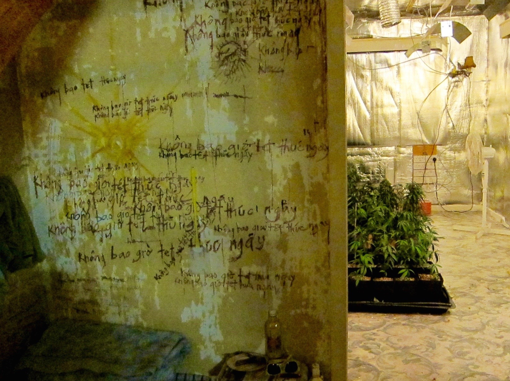 STOLEN : CANNABIS GROWING HOUSE